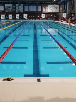 A. Savickas tapo Europos jaunimo plaukimo čempionu