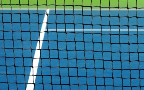 R. Berankis turnyrą Prancūzijoje pradėjo pergale